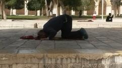Musulmán orando en la Explanada del Templo